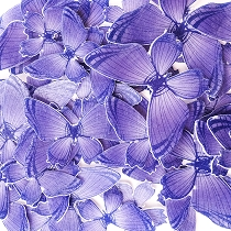 Purple Edible Wafer Paper Butterfly