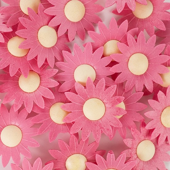 Edible Wafer Paper Flowers - Pastel Red